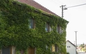 Bojkovice-Bzová. Pamětní deska Vítězslavu Josefu Rosíkovi
