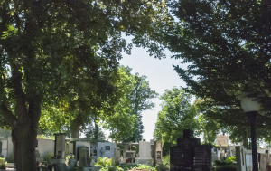 Jaroměřice nad Rokytnou. Symbolický hrob Plichtových