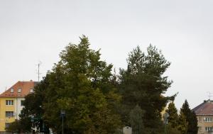 Třebíč. Památník obětem komunismu