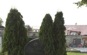 Žďárná. Symbolický hrob Petra Konečného