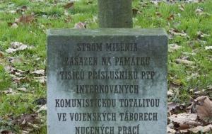 Kroměříž. Strom milénia s pamětní deskou příslušníkům Pomocných technických praporů